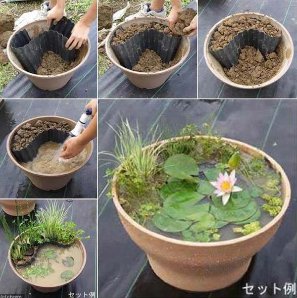 AD-Mini-Pond-In-A-Pot-1